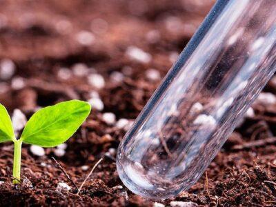 Согласован перечень и площади сельскохозяйственных угодий, агрохимическое обследование которых будет проведено в 2021 году